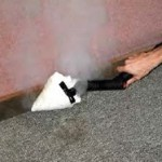 Hire Professional Bed Bugs Exterminator At Bed Bugs,  ETC